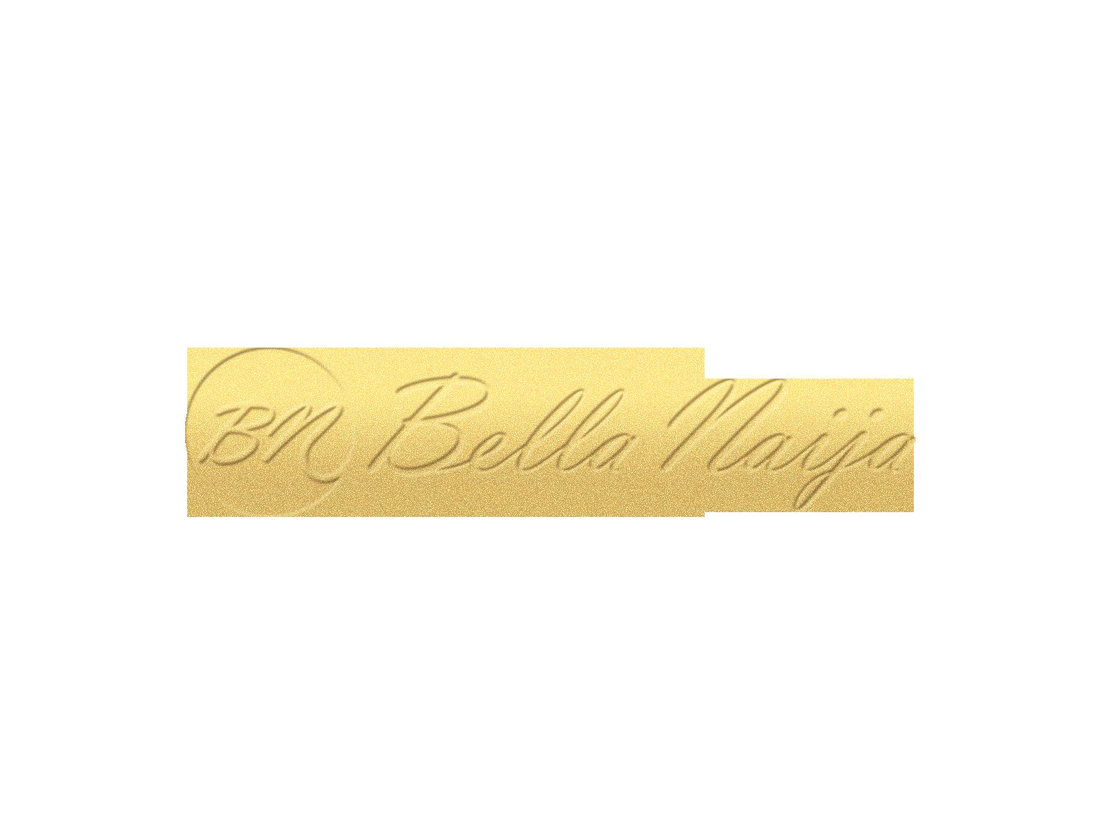 new-bn-logo-1